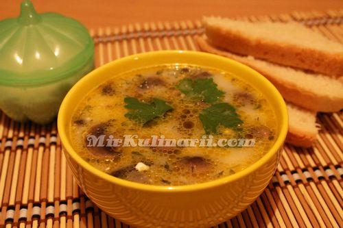 Грибной суп из шампиньонов с плавленым сыром рецепт