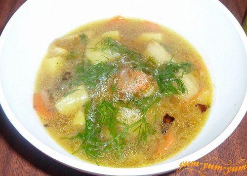 Суп из замороженных грибов рецепт с фото