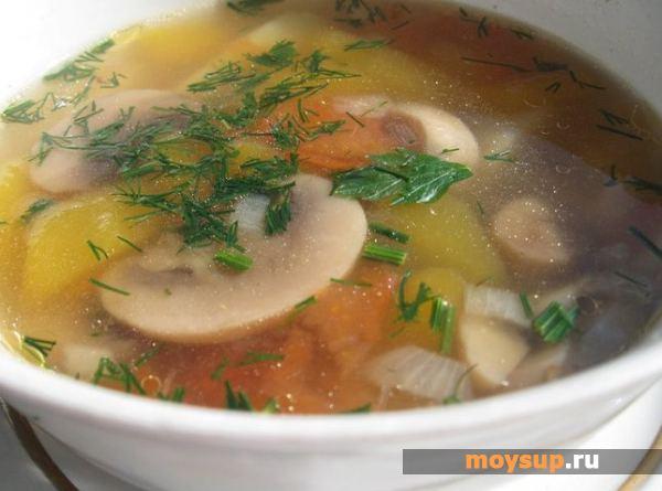 суп грибной из шампиньонов с курицей рецепт с фото