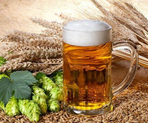 Как сделать пиво из хмеля в домашних условиях рецепты 37